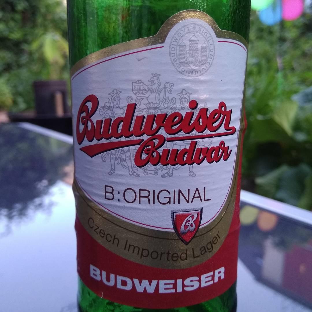 Wazzup!?! Budweiser Czech Imported Lager, das Original aus Tschechien